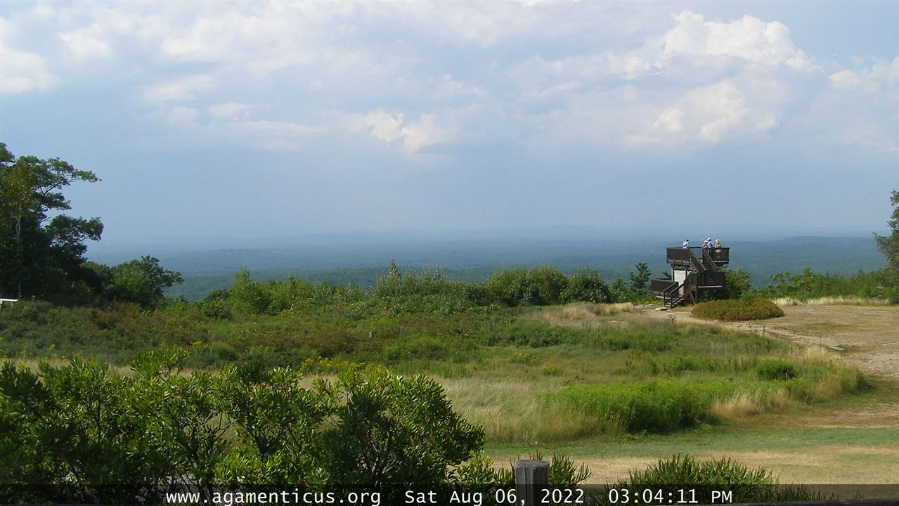 MT A Webcam
